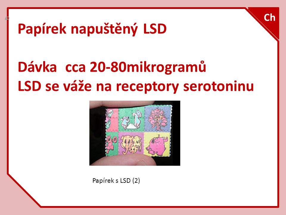 LSD se váže na receptory serotoninu