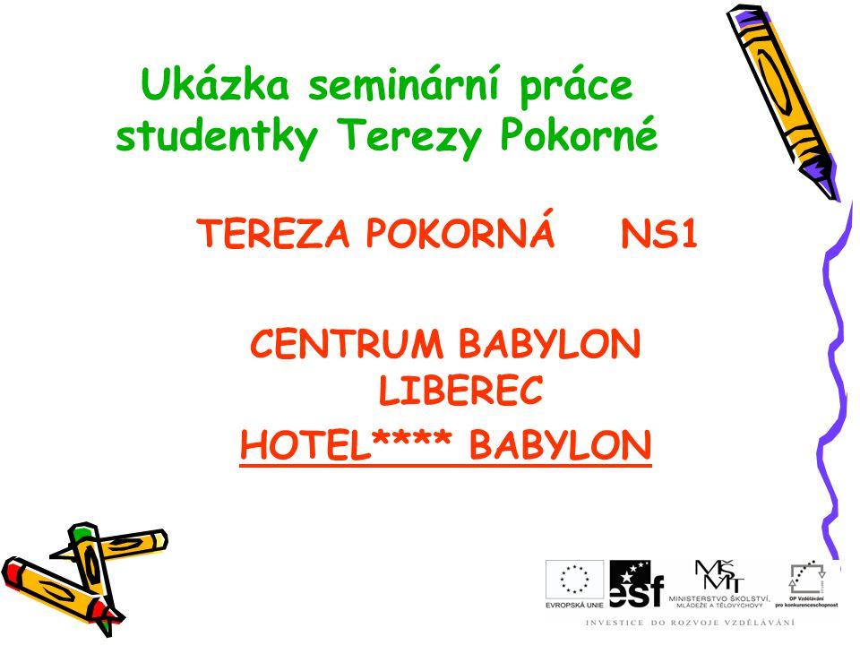 Ukázka seminární práce studentky Terezy Pokorné