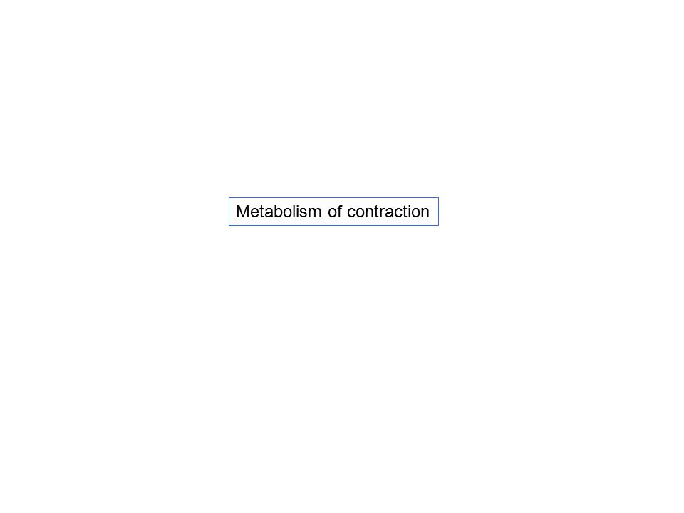 Metabolism of contraction