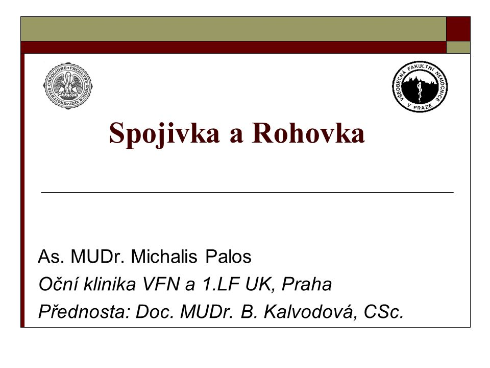 Spojivka a Rohovka As. MUDr. Michalis Palos