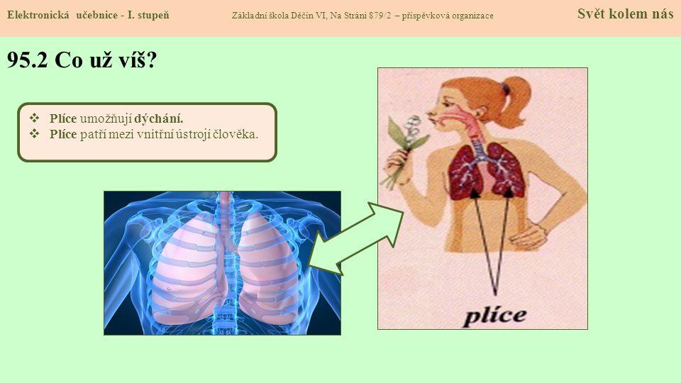 95.2 Co už víš Plíce umožňují dýchání.