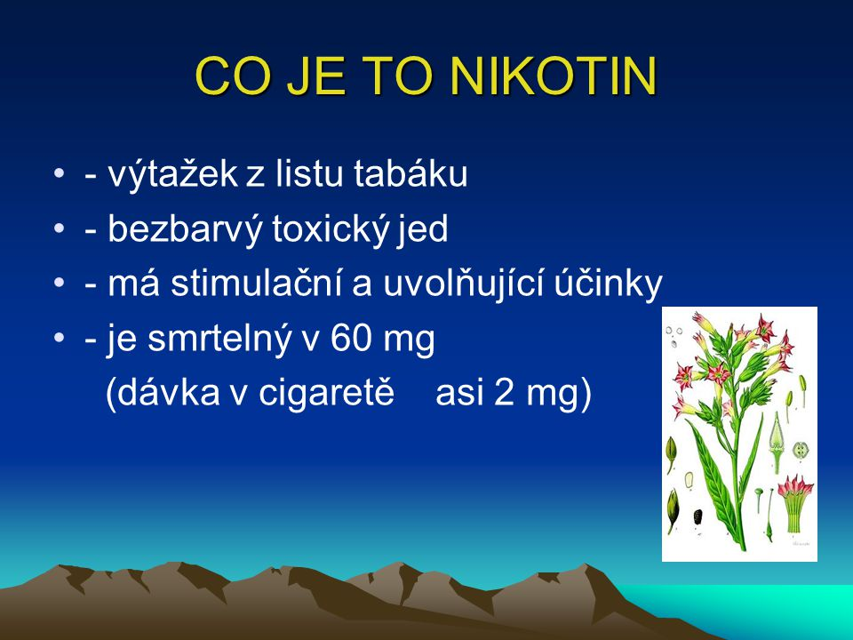 CO JE TO NIKOTIN - výtažek z listu tabáku - bezbarvý toxický jed