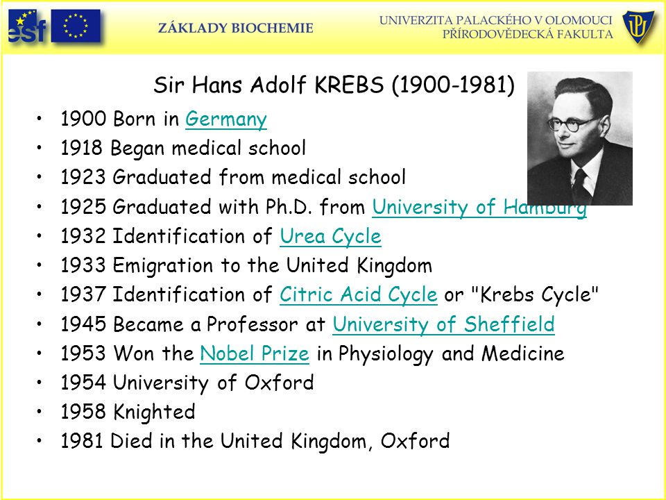 Sir Hans Adolf KREBS (1900-1981)