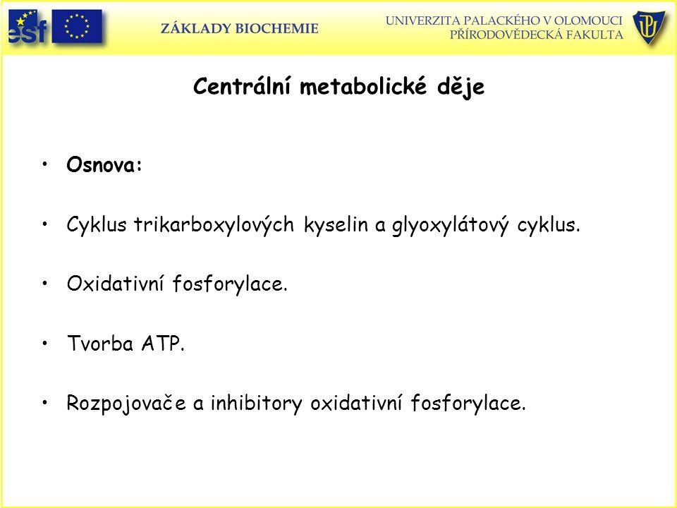 Centrální metabolické děje