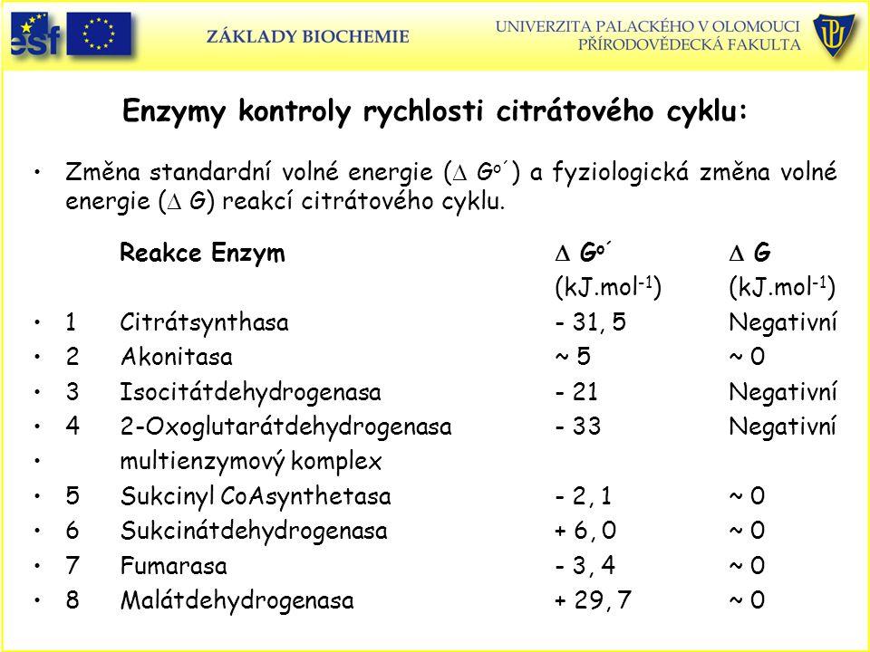 Enzymy kontroly rychlosti citrátového cyklu: