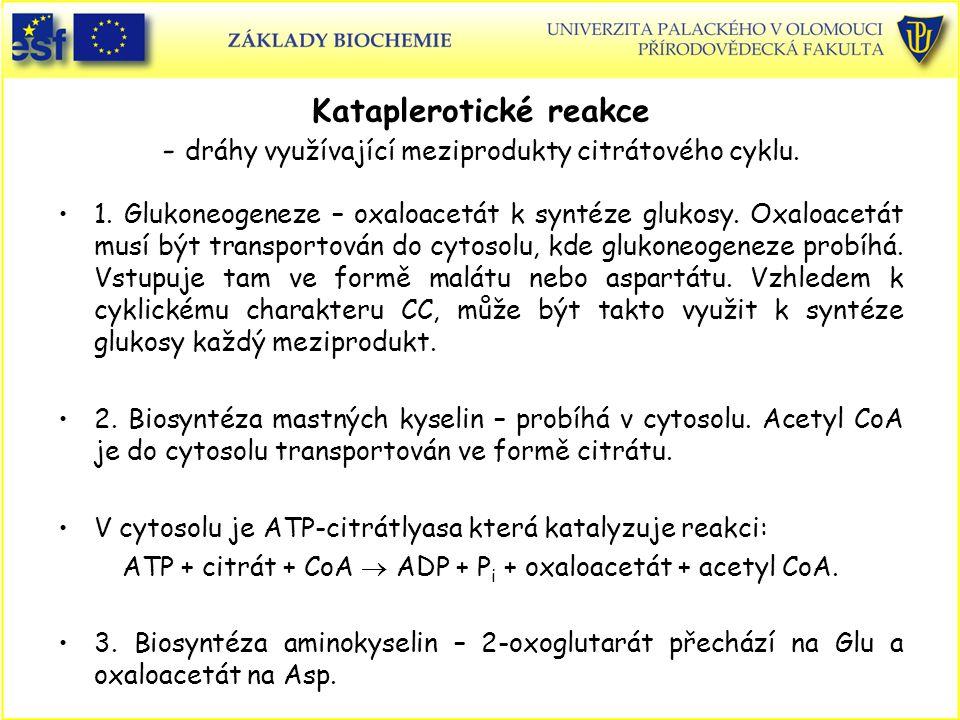 ATP + citrát + CoA  ADP + Pi + oxaloacetát + acetyl CoA.