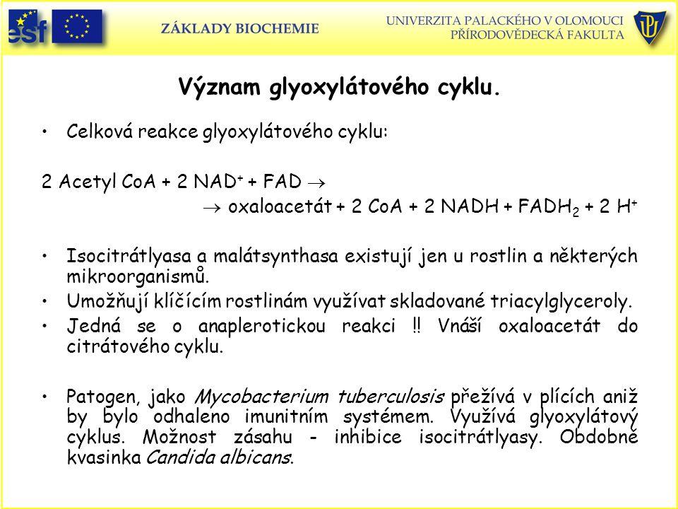 Význam glyoxylátového cyklu.