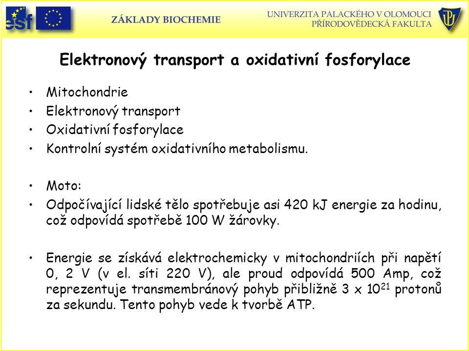 Elektronový transport a oxidativní fosforylace