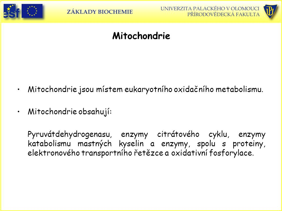 Mitochondrie Mitochondrie jsou místem eukaryotního oxidačního metabolismu. Mitochondrie obsahují: