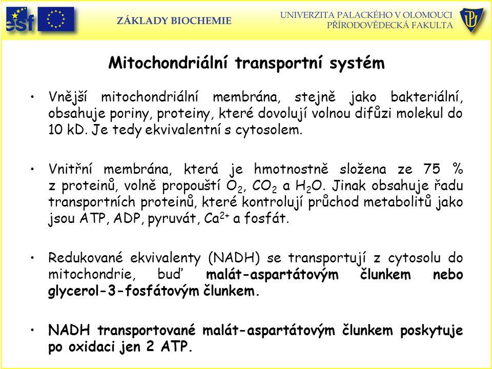Mitochondriální transportní systém