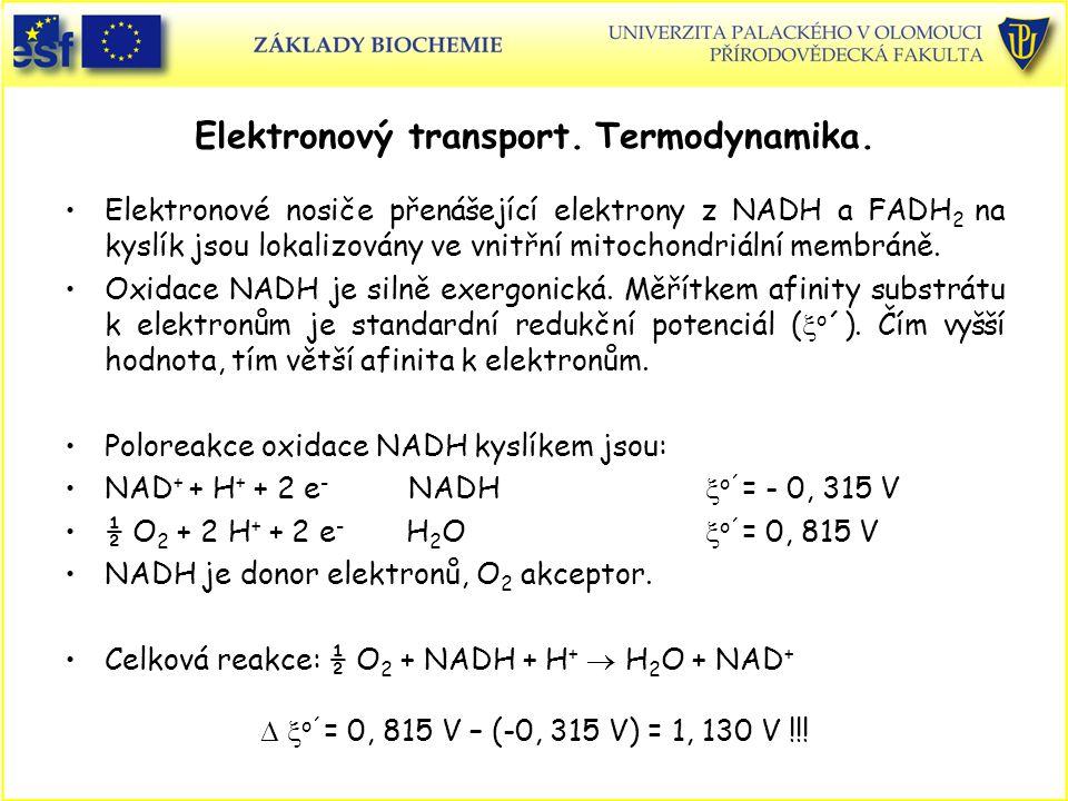 Elektronový transport. Termodynamika.