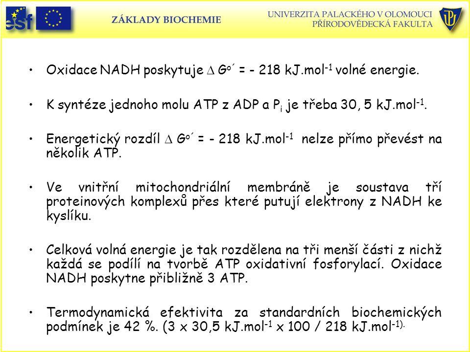 Oxidace NADH poskytuje D Go´ = - 218 kJ.mol-1 volné energie.