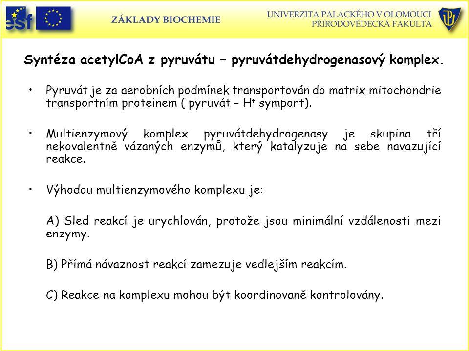 Syntéza acetylCoA z pyruvátu – pyruvátdehydrogenasový komplex.