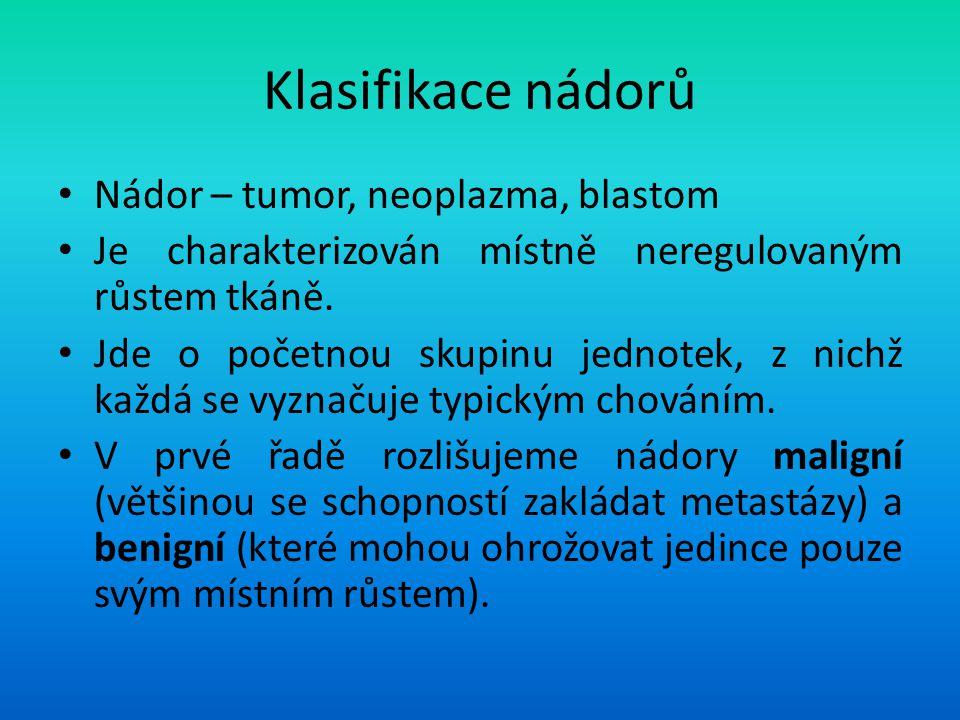 Klasifikace nádorů Nádor – tumor, neoplazma, blastom
