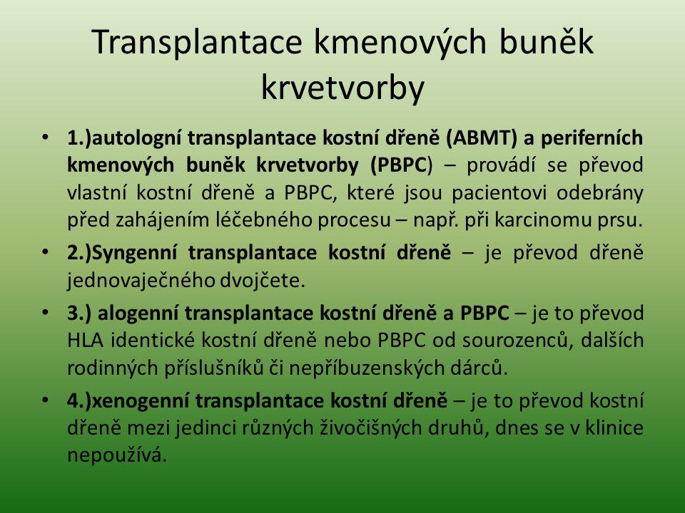 Transplantace kmenových buněk krvetvorby