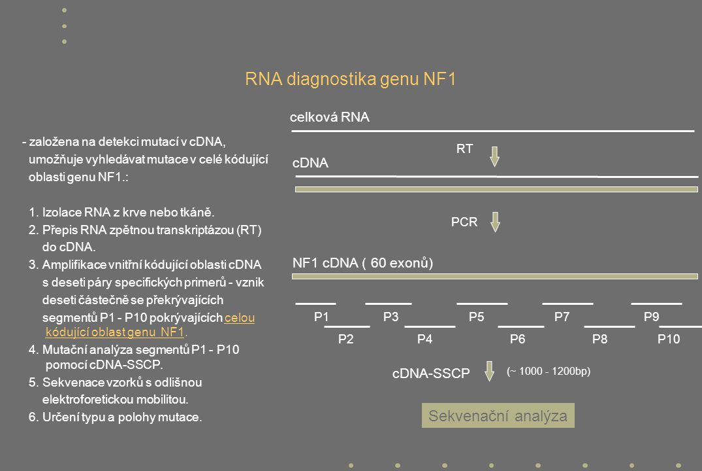 RNA diagnostika genu NF1