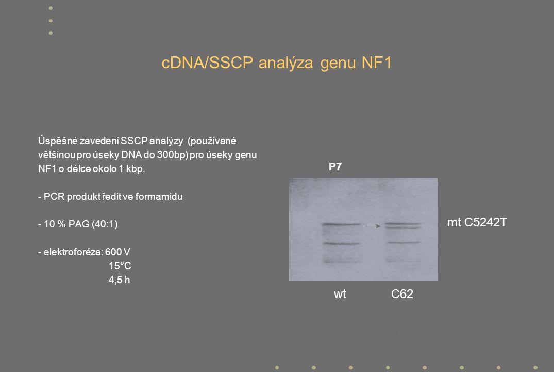 cDNA/SSCP analýza genu NF1