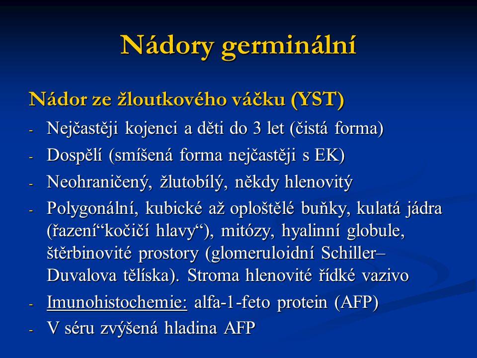 Nádory germinální Nádor ze žloutkového váčku (YST)