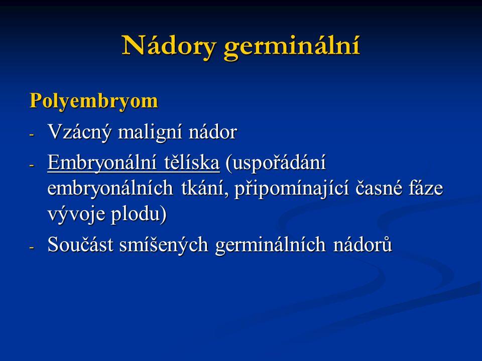Nádory germinální Polyembryom Vzácný maligní nádor