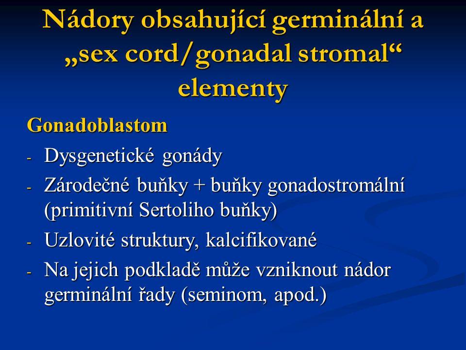 """Nádory obsahující germinální a """"sex cord/gonadal stromal elementy"""