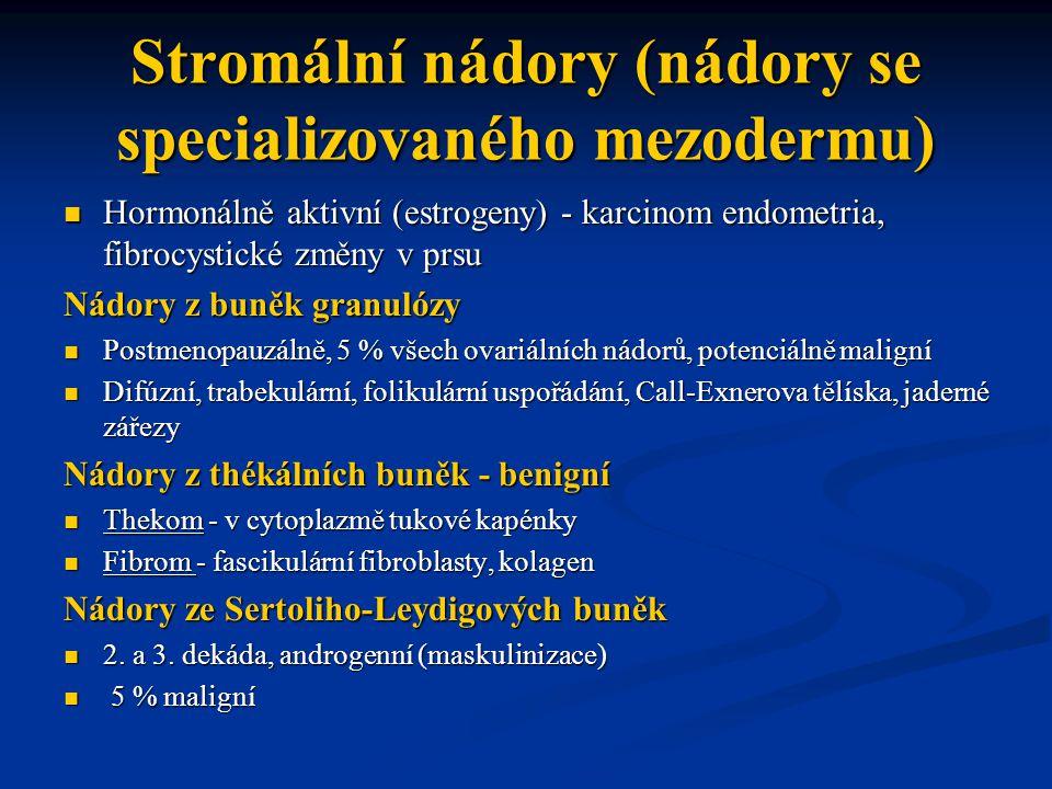 Stromální nádory (nádory se specializovaného mezodermu)