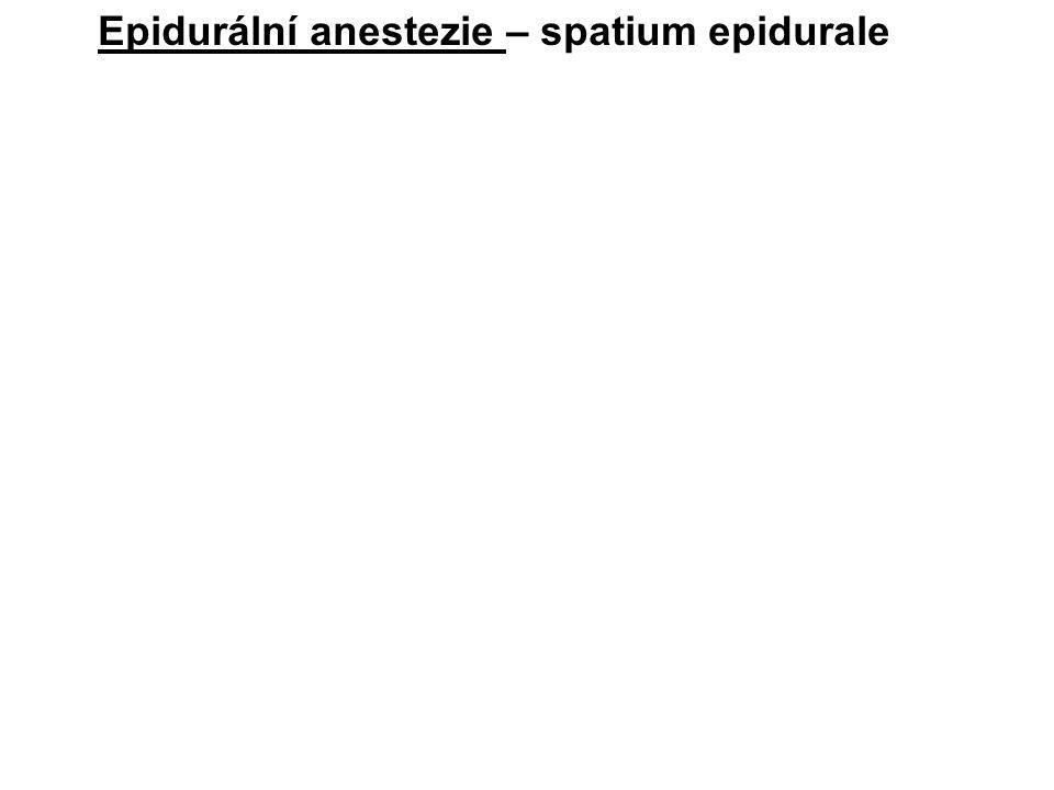Epidurální anestezie – spatium epidurale