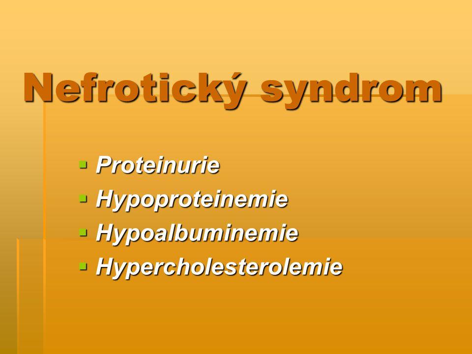 Nefrotický syndrom Proteinurie Hypoproteinemie Hypoalbuminemie