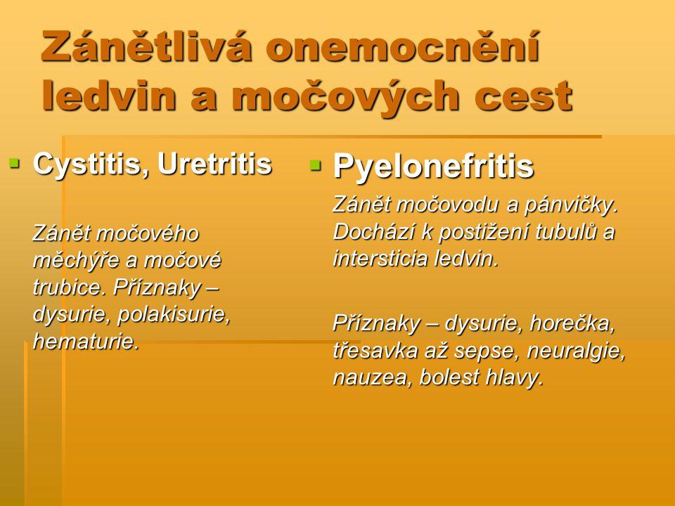 Zánětlivá onemocnění ledvin a močových cest