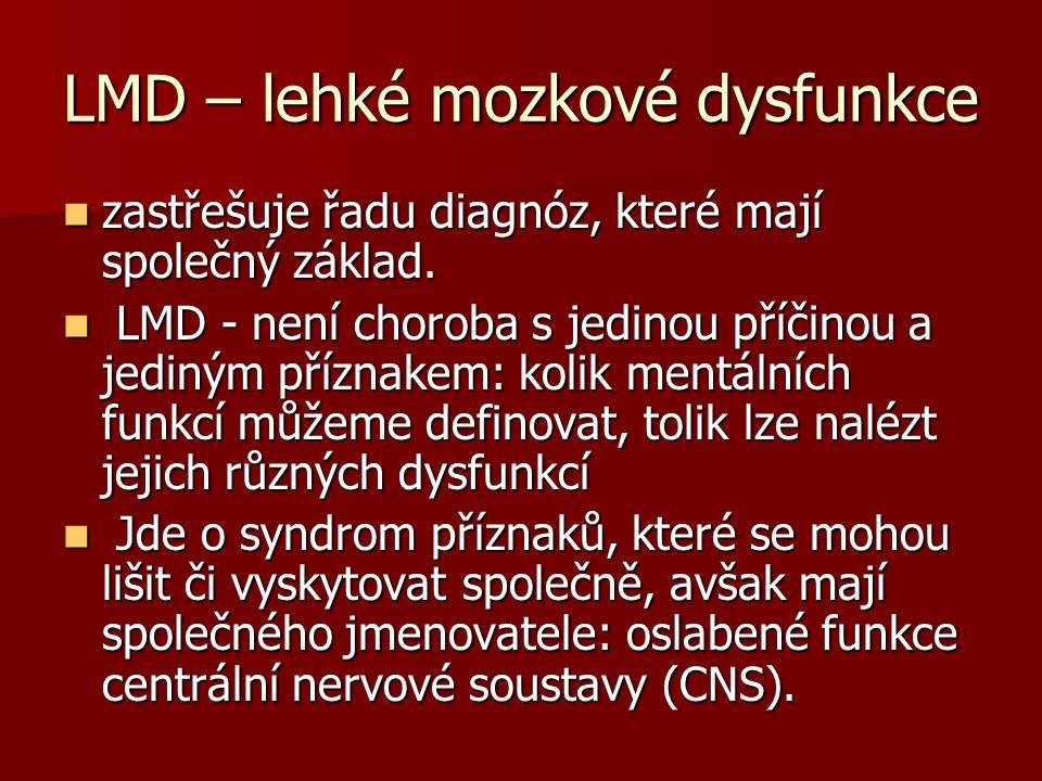 LMD – lehké mozkové dysfunkce