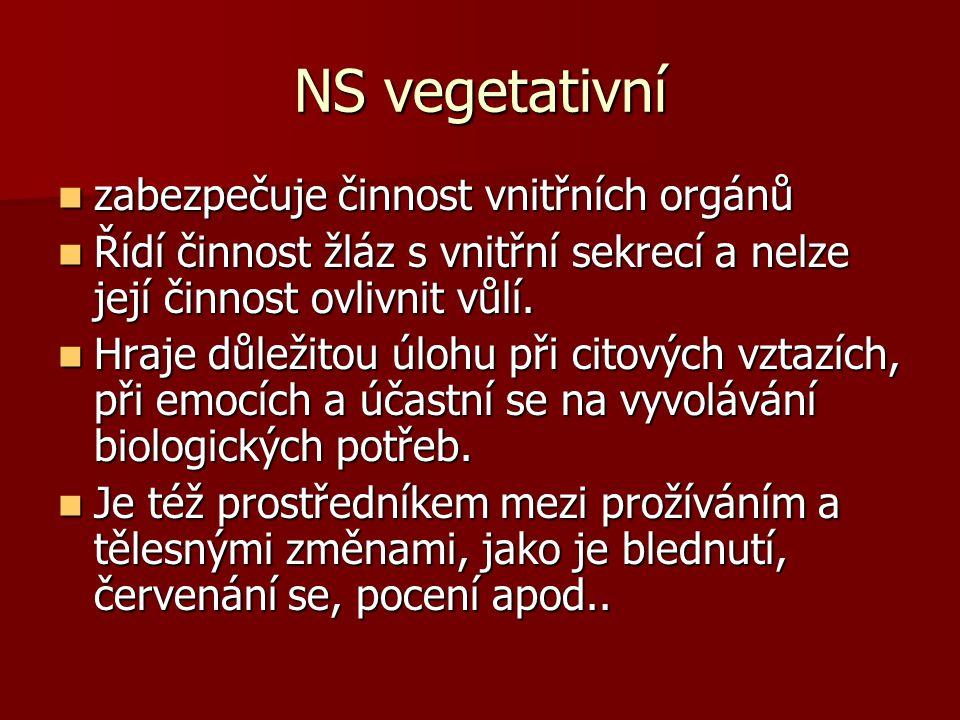 NS vegetativní zabezpečuje činnost vnitřních orgánů