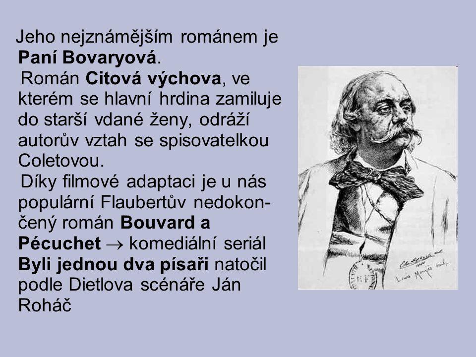 Jeho nejznámějším románem je Paní Bovaryová.