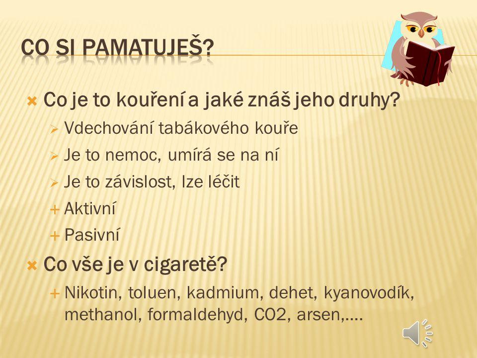 Co si pamatuješ Co je to kouření a jaké znáš jeho druhy