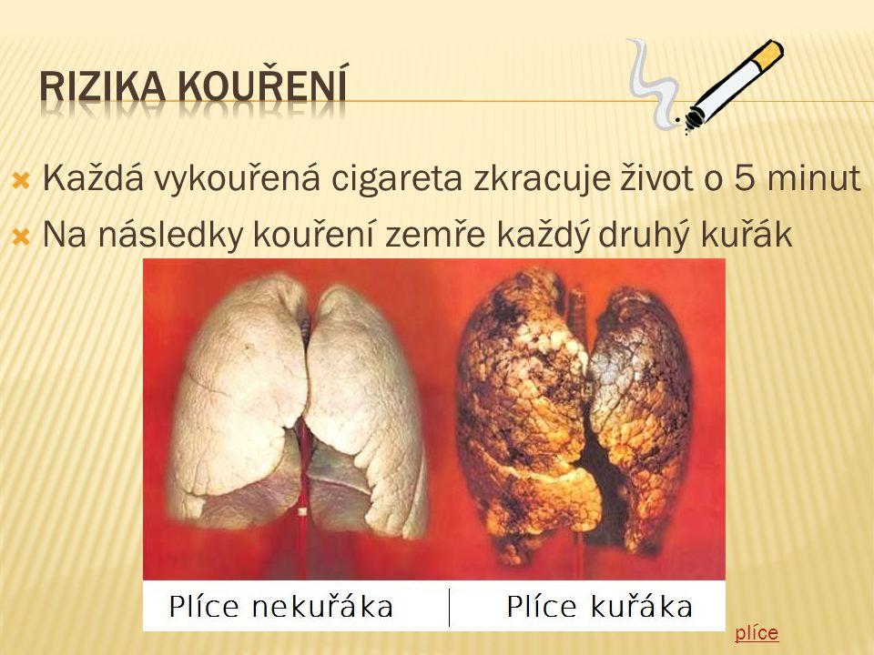 Rizika kouření Každá vykouřená cigareta zkracuje život o 5 minut