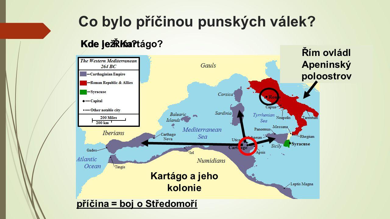 Co bylo příčinou punských válek