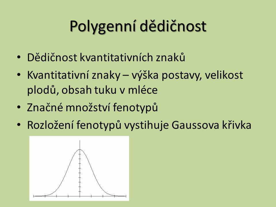 Polygenní dědičnost Dědičnost kvantitativních znaků
