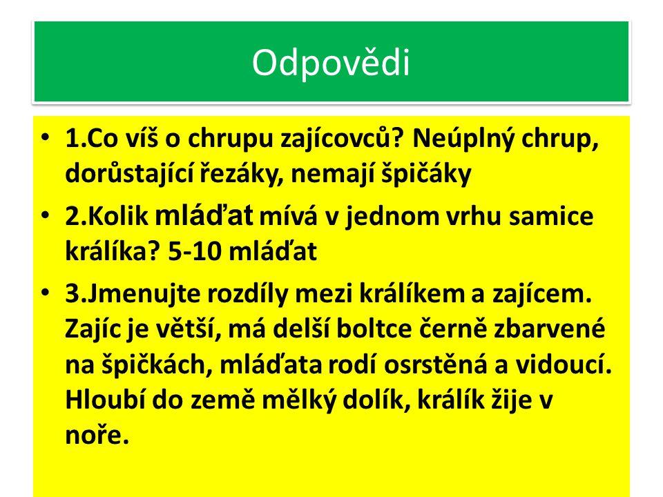 Odpovědi 1.Co víš o chrupu zajícovců Neúplný chrup, dorůstající řezáky, nemají špičáky.