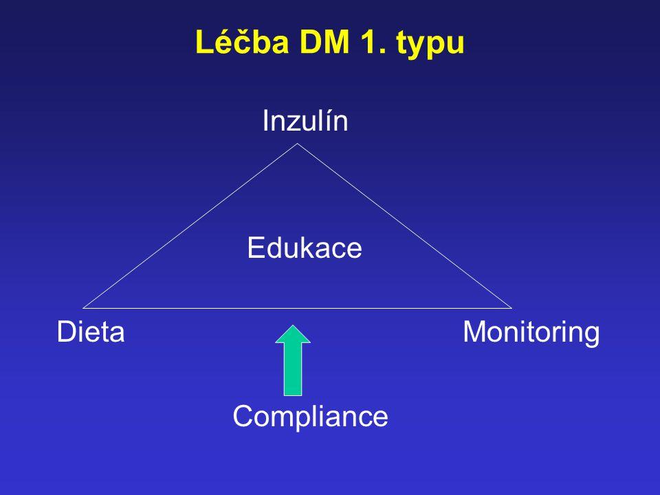 Léčba DM 1. typu Inzulín. Edukace. Dieta Monitoring.