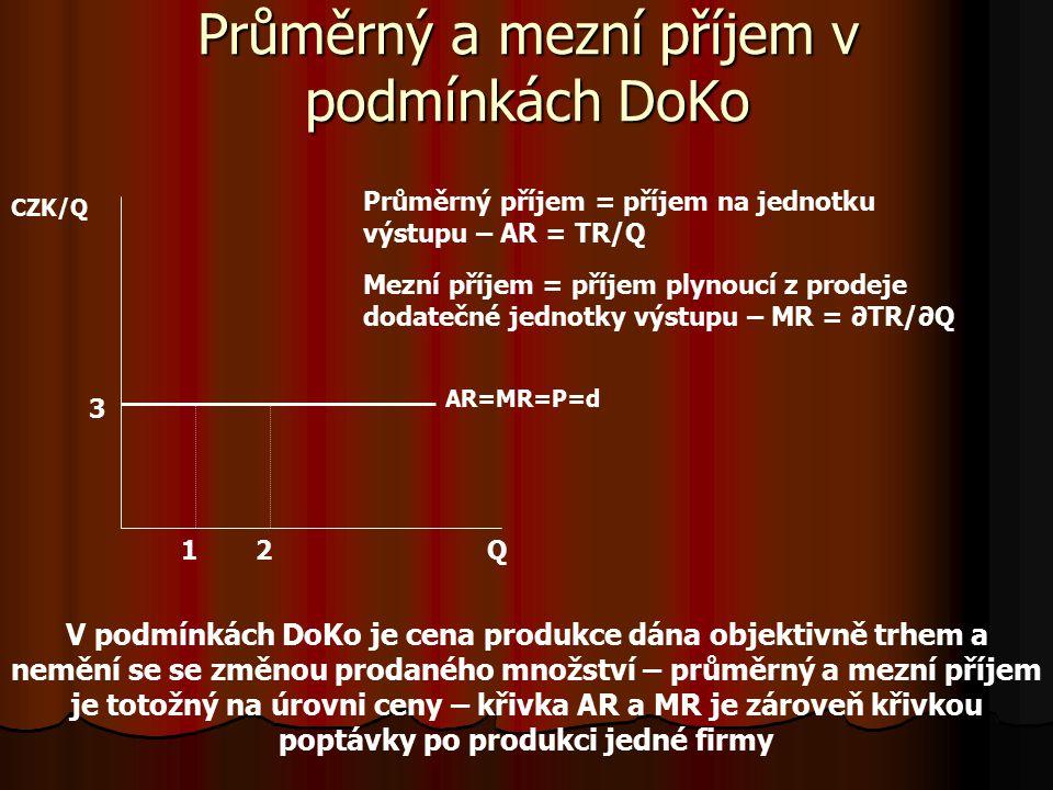 Průměrný a mezní příjem v podmínkách DoKo