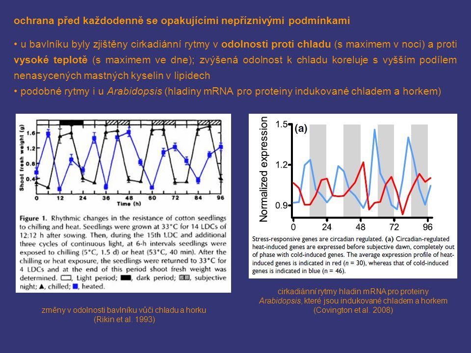 změny v odolnosti bavlníku vůči chladu a horku