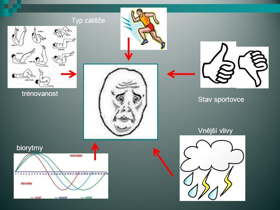 Typ zátěže trénovanost Stav sportovce Vnější vlivy únava biorytmy