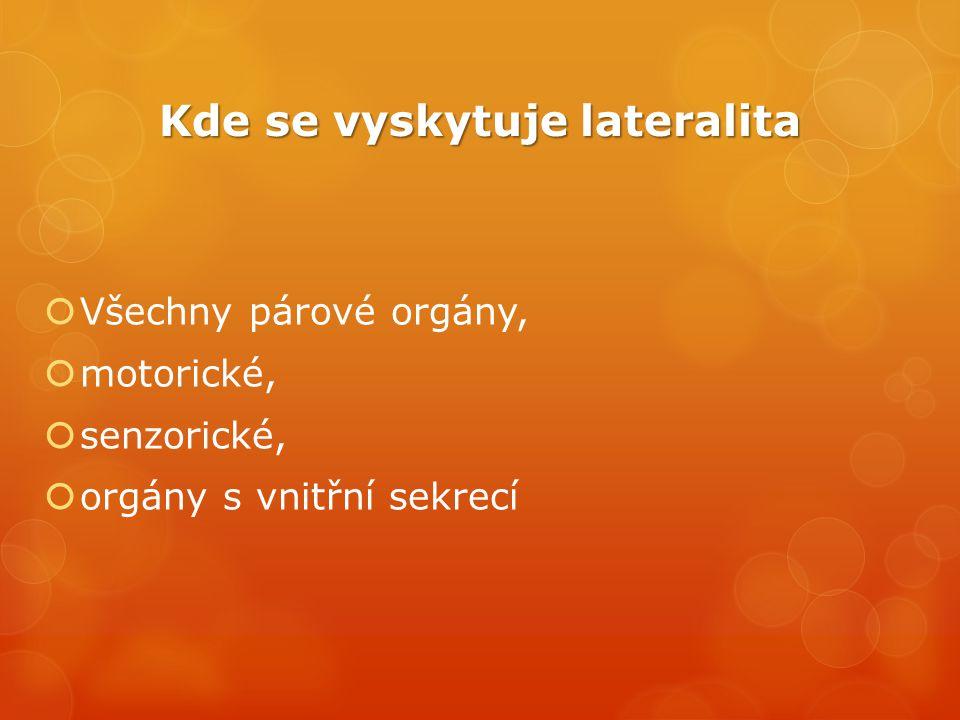 Kde se vyskytuje lateralita