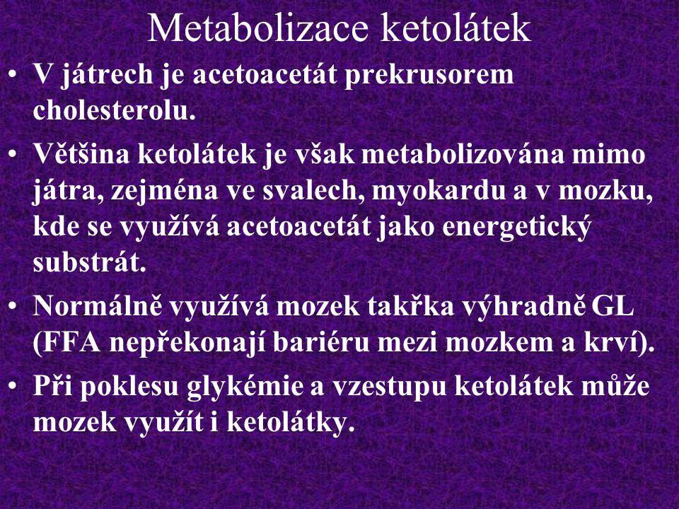 Metabolizace ketolátek
