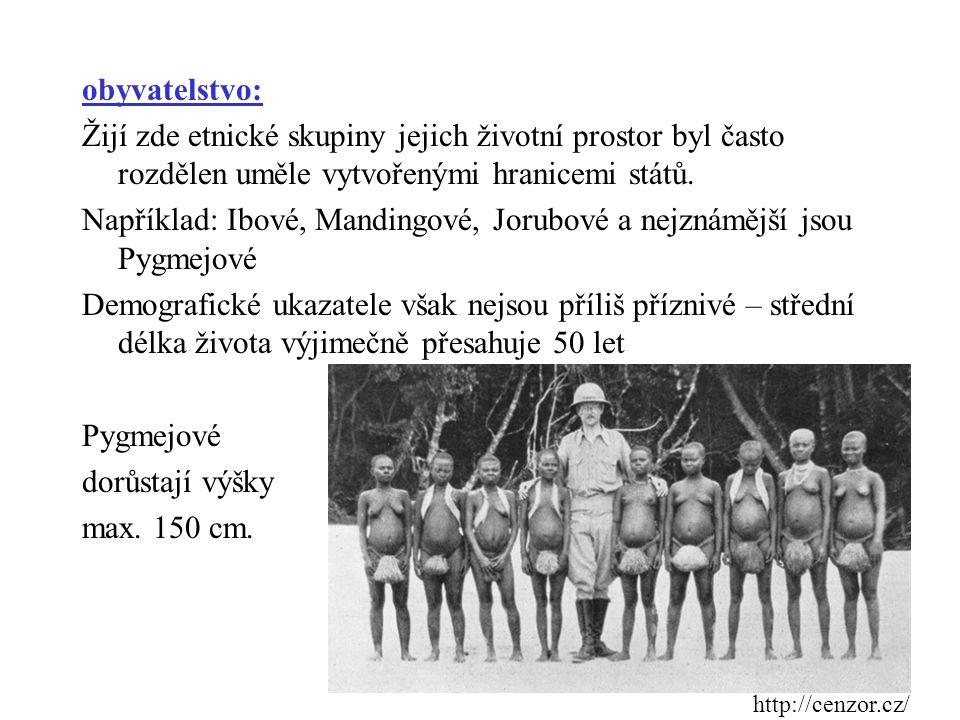 obyvatelstvo: Žijí zde etnické skupiny jejich životní prostor byl často rozdělen uměle vytvořenými hranicemi států. Například: Ibové, Mandingové, Jorubové a nejznámější jsou Pygmejové Demografické ukazatele však nejsou příliš příznivé – střední délka života výjimečně přesahuje 50 let Pygmejové dorůstají výšky max. 150 cm.