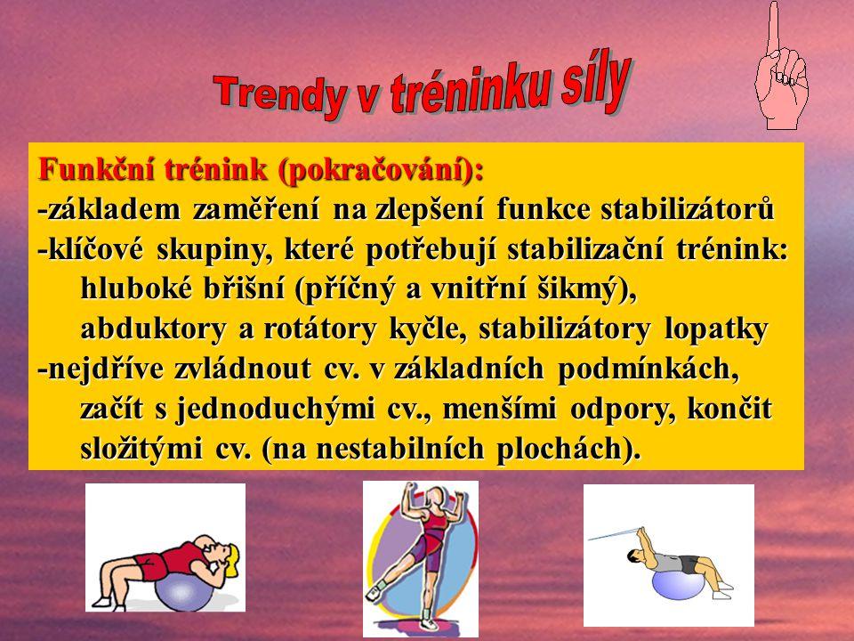 Funkční trénink (pokračování):