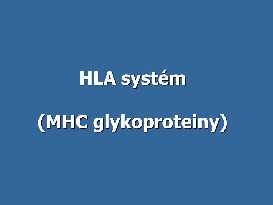 HLA systém (MHC glykoproteiny)