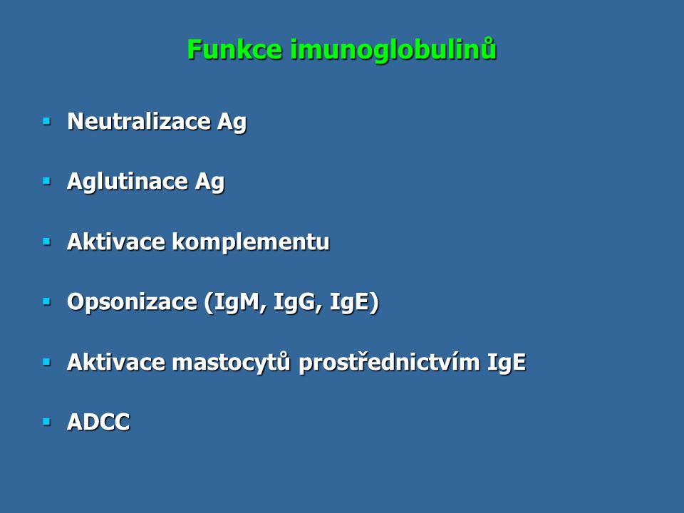 Funkce imunoglobulinů