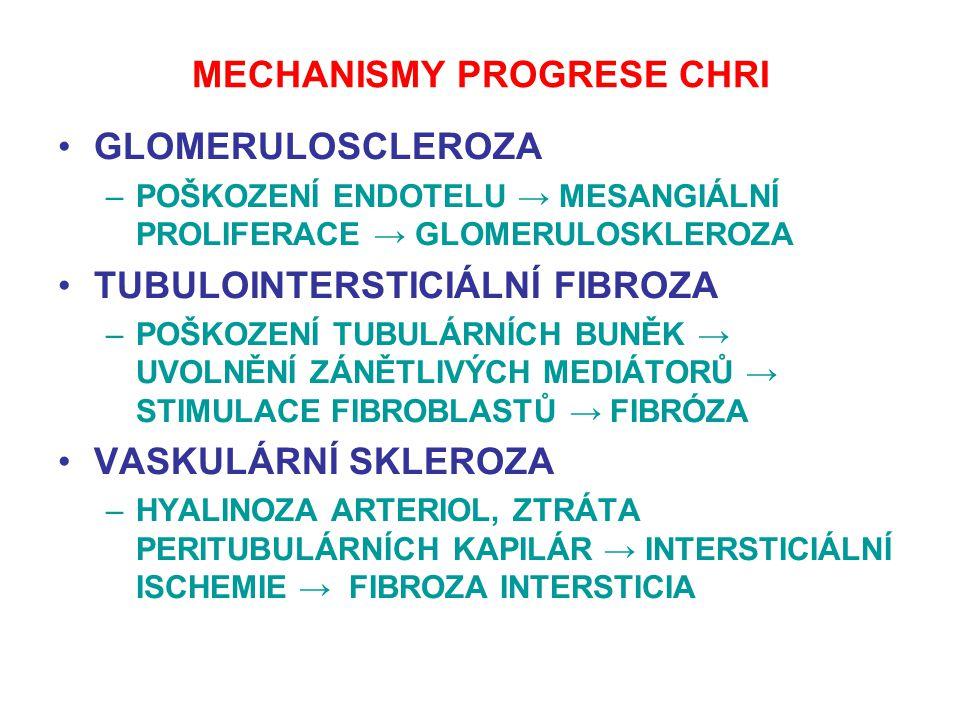 MECHANISMY PROGRESE CHRI