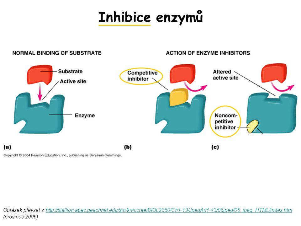 Inhibice enzymů