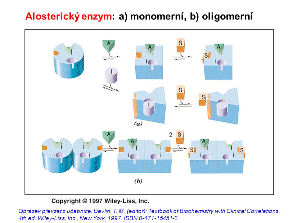 Alosterický enzym: a) monomerní, b) oligomerní