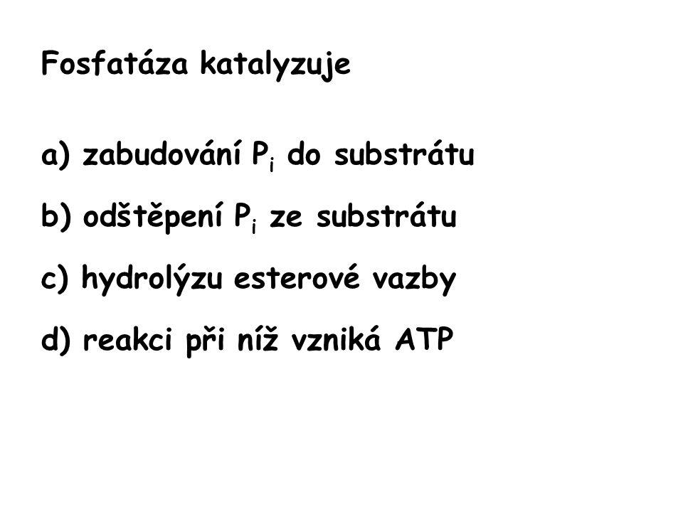Fosfatáza katalyzuje a) zabudování Pi do substrátu. b) odštěpení Pi ze substrátu. c) hydrolýzu esterové vazby.